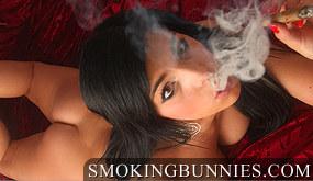 Smoking Bunnies