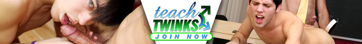 teachtwinks.com