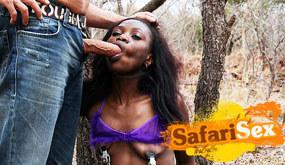 Safari Sex Channel