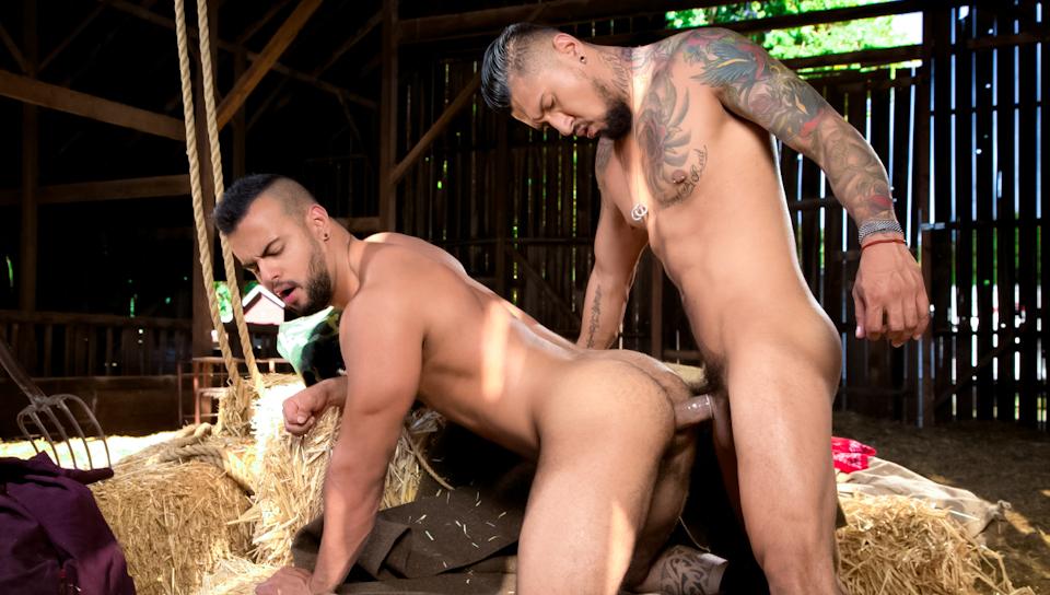 Gay Western Porn