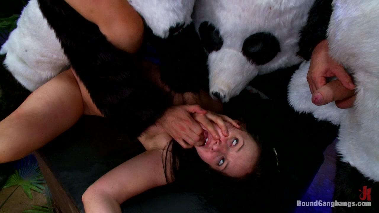 πορνό Panda μεγάλο μαύρο πουλί διείσδυση