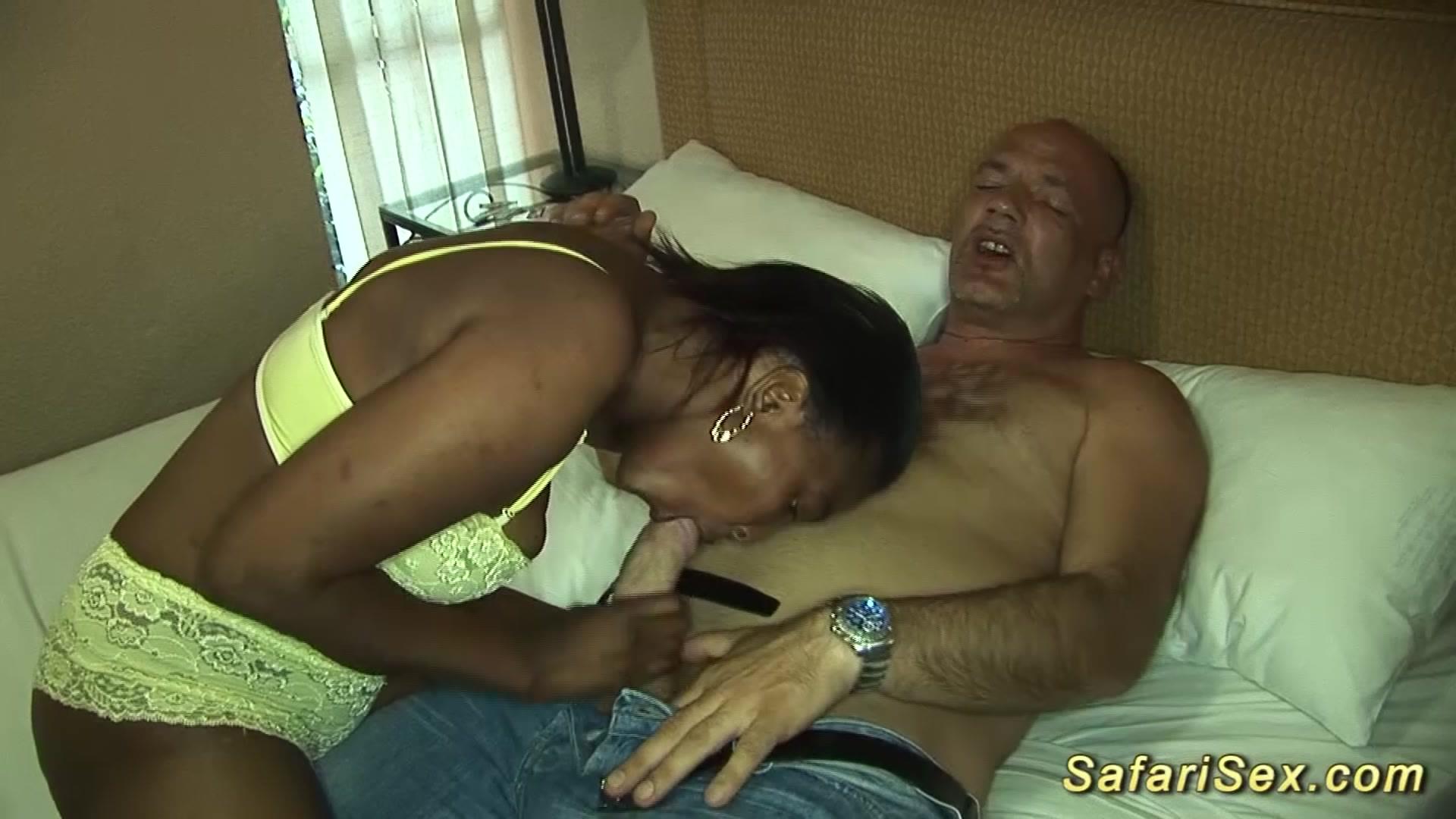 Tube Safari Porn