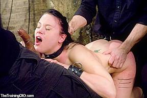 Lesbian fist fucking orgy