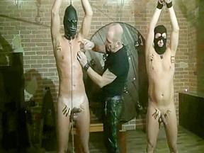 Free gay porn very young