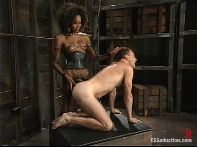 Wild Bill and Mistress Soleli