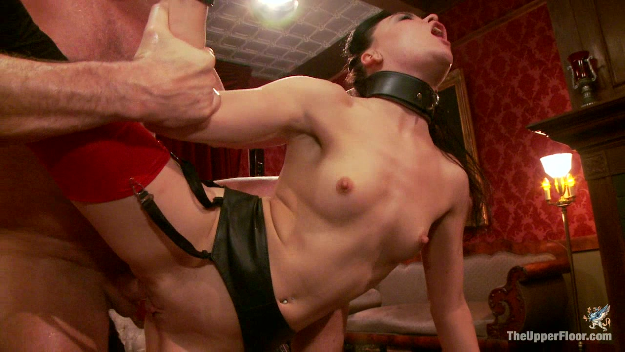 Porn Star Anal Orgy