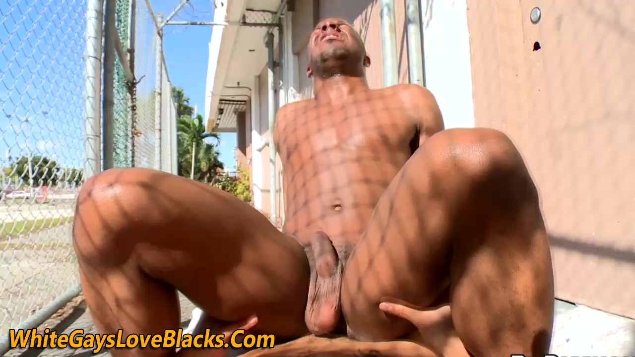Dick sucked whitey slams ass