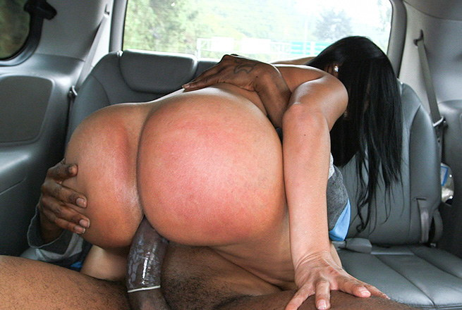 Ass bangbus sex
