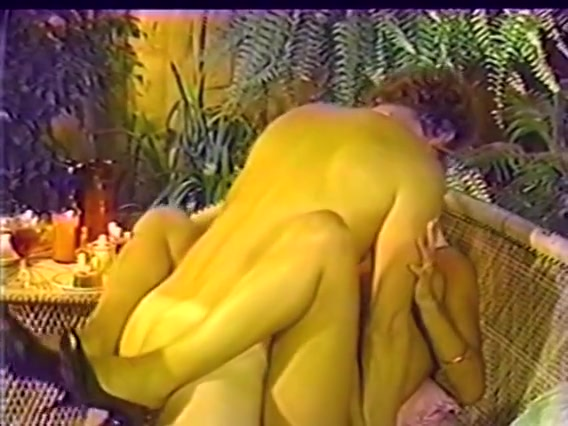 Erica Boyer, Nina Hartley, Porsche Lynn in vintage xxx site